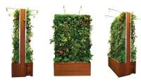 plant-wall-design-modular-green-wall.jpg